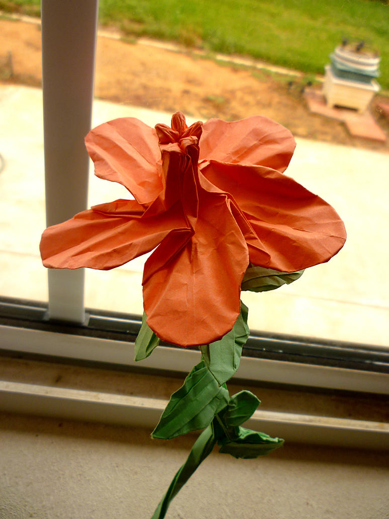 Origami hibiscus by zapper slapper on deviantart origami hibiscus by zapper slapper izmirmasajfo