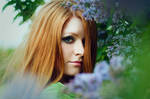 Lilac RedHead