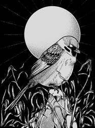 Sparrow by Chmurzasty