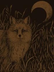 Fox by Chmurzasty
