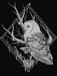 The Owl by Chmurzasty