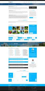 MajeStik PSD Corporate Responsive Design