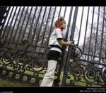 The Mansion Gates