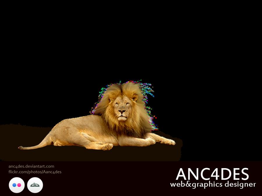 LION PNG BY ANC4DES by ANC4DES