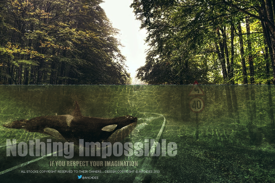 NOTHING IMPOSSIBLR - ANC4DES by ANC4DES