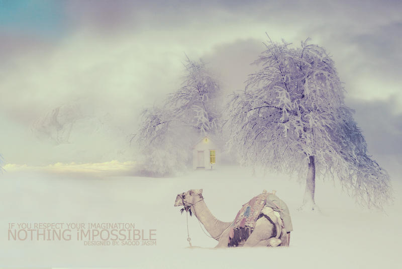 Nothing Impossible by ANC4DES