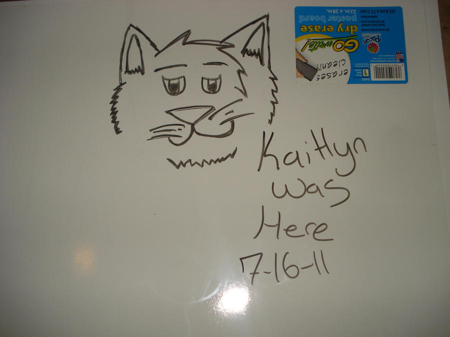 Whiteboard cat doodle by aquarose525 on deviantart for Cute whiteboard drawings
