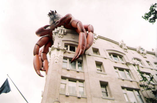 The building crabs