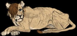 Hedax's Profile Picture