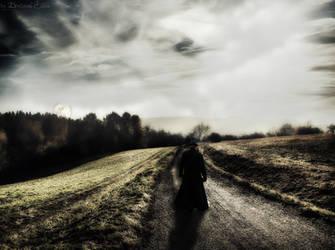 Walking by Brebenel-Silviu