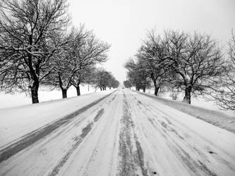 White Road by Brebenel-Silviu