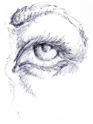 Ojo -eye-