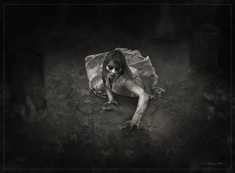 Zombie graveyard bw-W