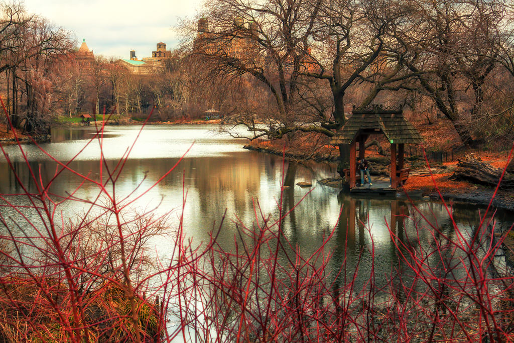 Central Park Getaway by BautistaNY
