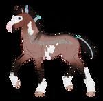 N2424 Padro Foal Design