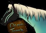 N2148 EFF Ocean Trench