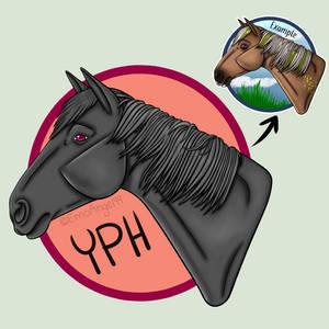 Headshot YPH [open]