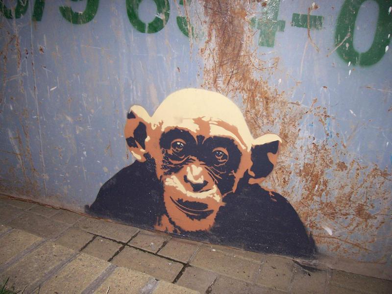 Bald Monkey by sensisiderockaz