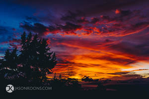 Homestead Sunset | Maui by JasonKoons