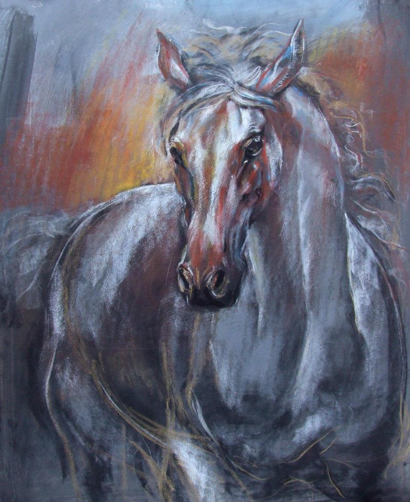 Horse by gfaruque