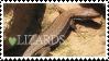 Lizards by stamp-animalia