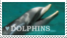 Dolphins by stamp-animalia