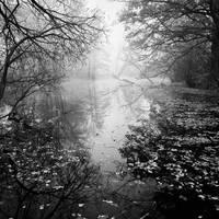 Autumn Reflections II by EmilStojek