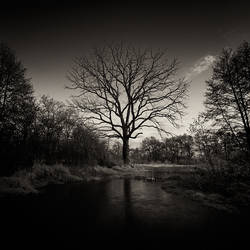 Requiem by EmilStojek