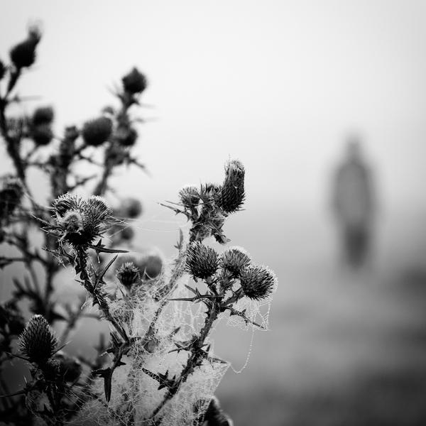 Doubtful by EmilStojek