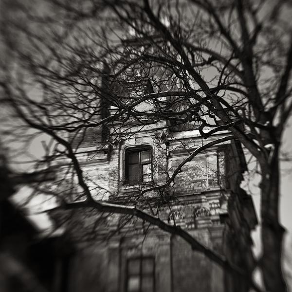 Window by EmilStojek