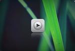 iPhone 3GS Theme