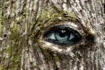 magic eye by jost1
