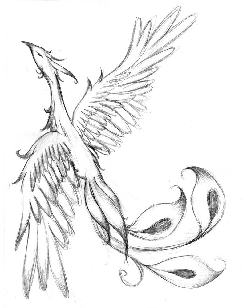 Phoenix Tattoo WIP by plnstgfx