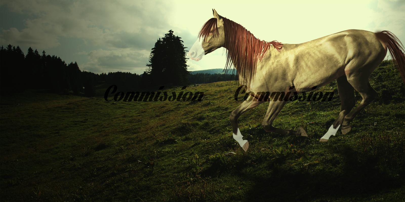 Commission: Victoria