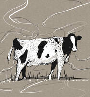 Cow by EDC9AF