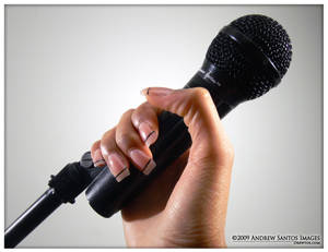 Gimme The Mic