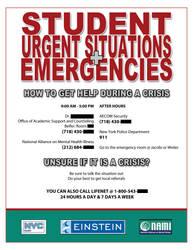 Emergency Flyer