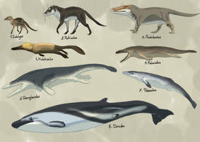 Whale evolution by Rainbowleo