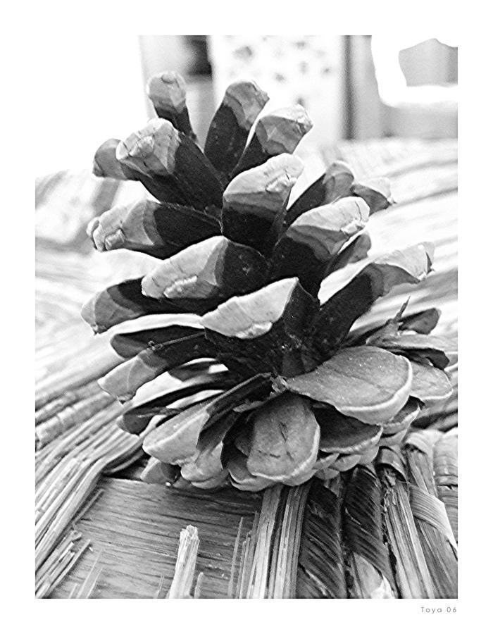 Pomme de pin by oyohimura on deviantart for Lampe pomme de pin