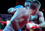 Swedish Championship in Kickboxing - 2012