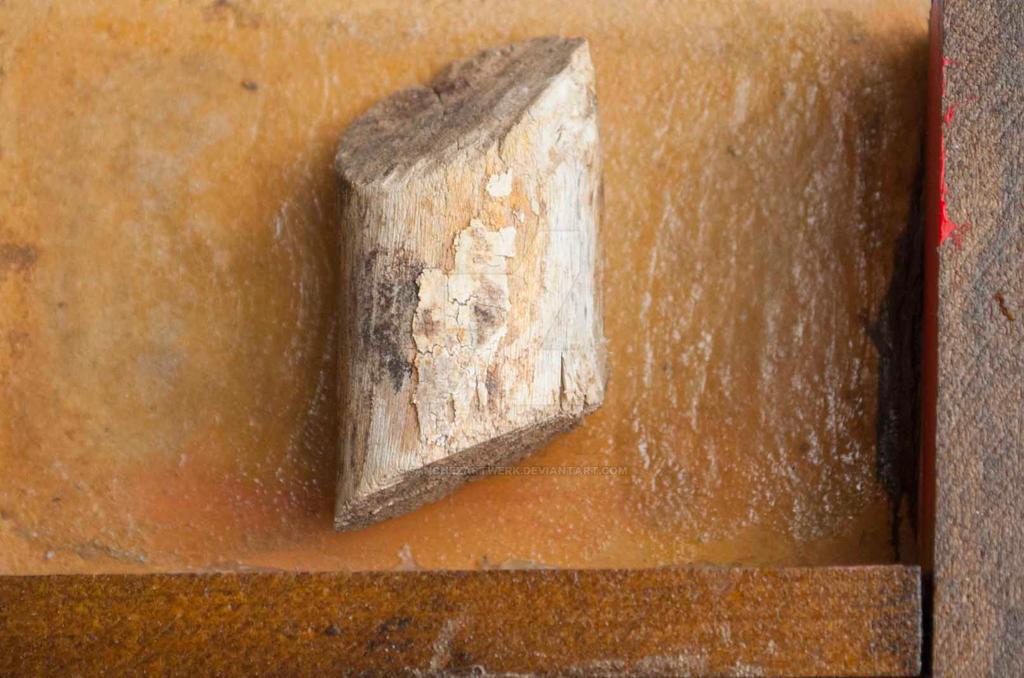 detail Five Found Decay wood by sanchezartwerk