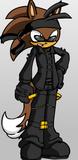 Xeapher the Ninja Hedgewolf by Shadowlightlink