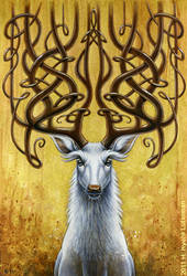 Dream Deer
