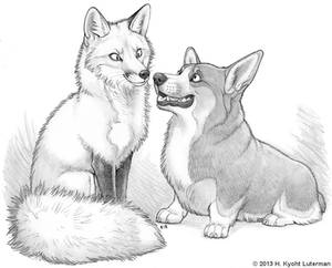 Fox And Corgi