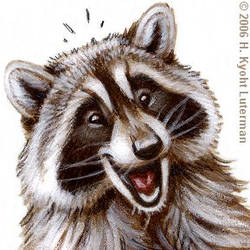 Happy Raccoon