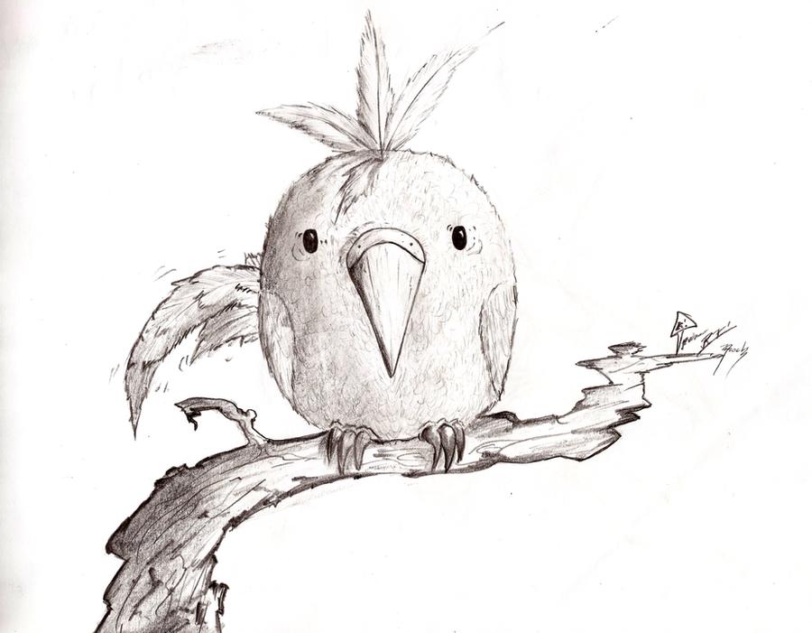Chubby Birdy by Fredibaldo24