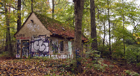 Abandoned in the Wood by j-heuer