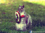 Captain Squirrel - The First Avenger