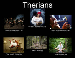 Therians: What they think we do by SollinFaolan