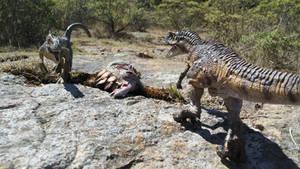Ceratosaurus Vs Allosaurus...